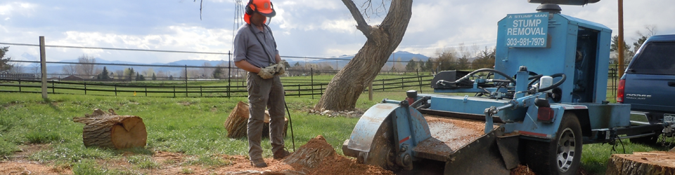 Stump Removal Video